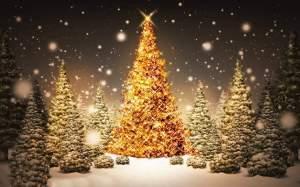 Christmas Masterclass